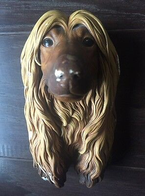 RARE Bossons Chalkware AFGHAN HOUND DOG CHARACTER Head MASK Vintage Wall Plaque