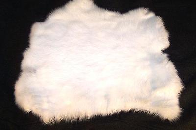 auction for RABBIT SKIN NEW WHITE COLOR fur pelt bunny tanned new rabbits skins