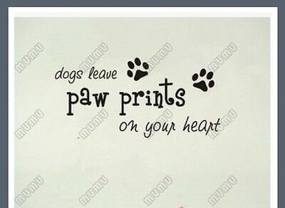 """Wall Decal Saying """"Dog Leave Paw Prints On Your Heart"""" - Brand New"""
