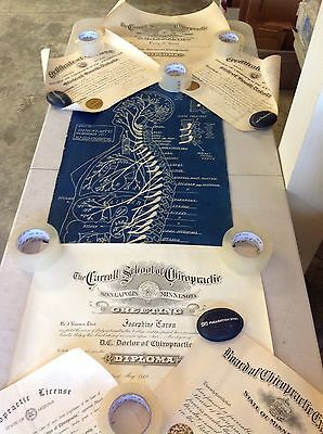 Antique Early 1920's Authentic Chiropractic Certificates And 1922 Body Chart