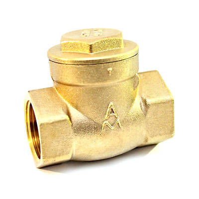 15 Brass Swing Check Valve