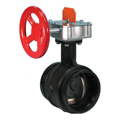 100 Roll Groove Butterfly Valve