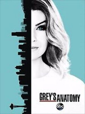 GREY'S ANATOMY: Season 13 * Brand New and Sealed * Fast Free Postage