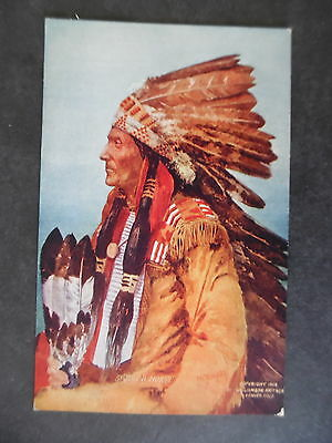 1908 Indian Chief Spotted Horse Postcard