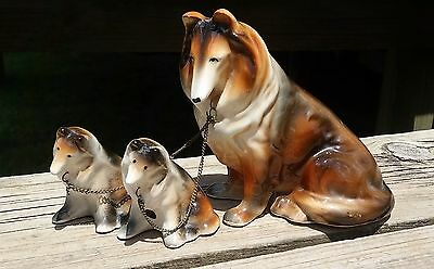 Vintage Collie Mother Dog Chained To Two Collie Pups--Japan