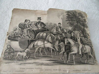 Antique Print Of The Victorian Royal Family