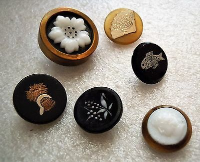 Antique Victorian Fancy Sewing Button Lot, Pique, Cameo, Painted, 6 pc Estate