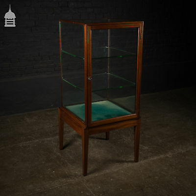 Fine Edwardian Glass Display Cabinet with Two Shelves