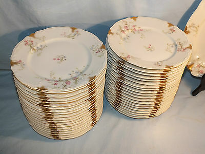 Early 1900 Limoges Haviland 1 Dessert Plate Possibility X24