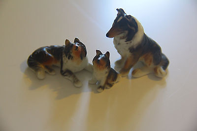 Wow! Vintage Bone China Border Collie Family of Figurines – Complete!