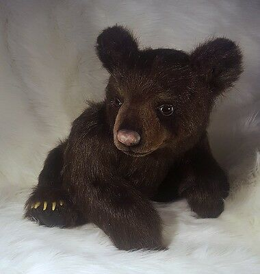 "Realistic OOAK (24"") Artist Young Brown Bear ""Febo"" by OsoMIMosO"