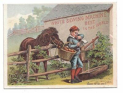 White Sewing Machine Trade Card - Horse Eating Apples from Boy's Basket