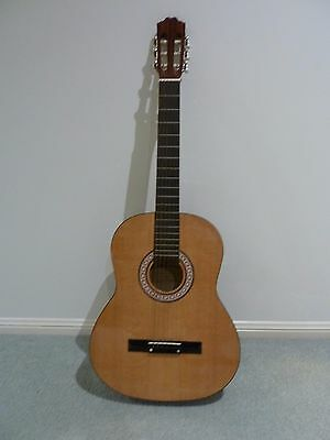 Full Size Classical Guitar, Soft Case, Tuner, Book (all)