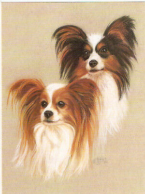 Papillon Notecard Note Card A Pretty Pair by MC Fletcher Pack of 2