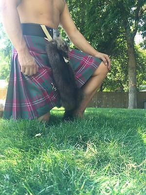Raccoon sporran masked sporran Scottish kilt bag gaelic celtic fur sporran