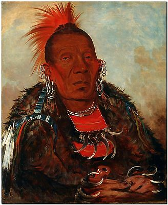 Native Indian Warrior Art by George Catlin-Tribe Chief- Canvas Print 8X10""
