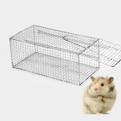 Humane Rat Trap Cage Animal Pest Rodent Mice Mouse Control Live Bait Catch NEW 4