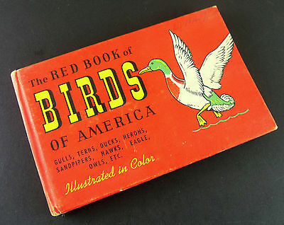 The Red Book of Birds Of America Vintage Illustrated Guide 1961 60s Small Book