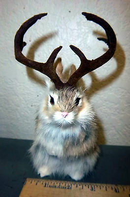 Cute Furry Tan Jackalope with LARGE horns! 7.5 inches tall -  very very cute!