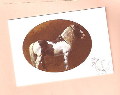Horse Notecards Note Card The Gypsy Cob by Malcolm Coward Pack of 5