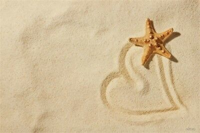 Studio 5x3ft Baby Backdrop Beach Starfish Vinyl Photo Background For Photography