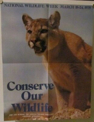 1970's American Wildlife Posters & Literature from Nat'l Wildlife Foundation