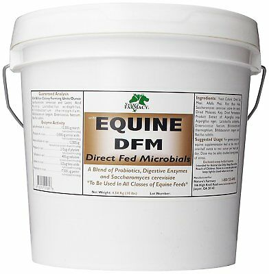 Equine DFM Direct Fed Microbial