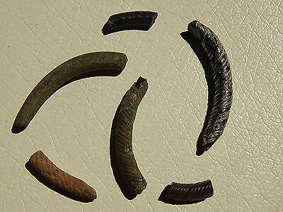 Ancient fragments of glass bracelets Viking.