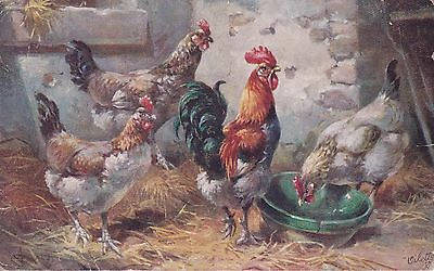 One Old Vintage Postcard Of A Hen Chicken And Chicks
