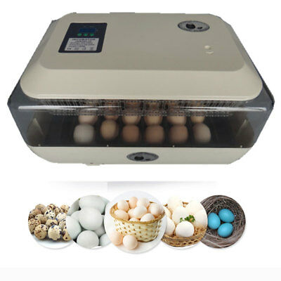 Auto-Turning Digital 24 Eggs Incubator Automatic Hatcher for Chicken Duck Quail