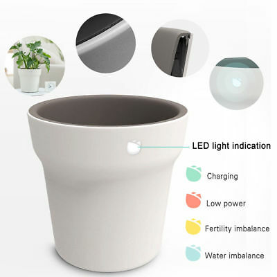 Soil Water Tester Sensor Xiaomi Flora Smart Flower Pot Monitor Digital Plant