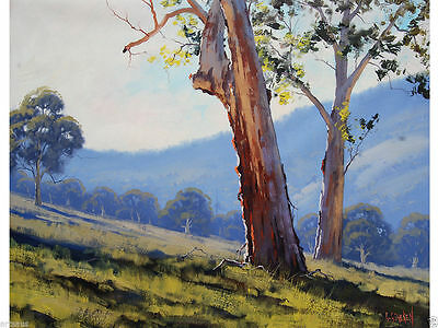 Tumut Gum Trees Painting Large Original Landscape Fine Art Oil Canvas G. Gercken