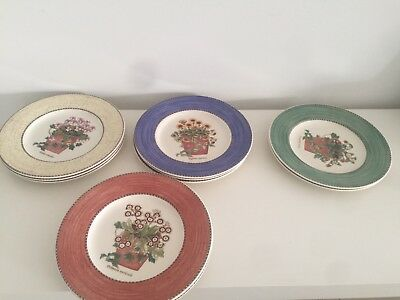 Wedgwood Sarah's Garden 20cm Plates Set of 10 in 4 colours