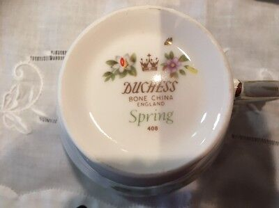 "Duchess Bone China ""Spring"" 408 made in England  Cup and Plate"