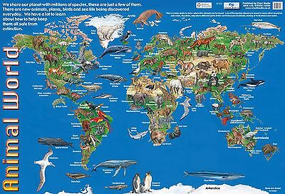 A2 Animal World Poster/  . Educational