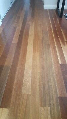 Spotted gum floorboards