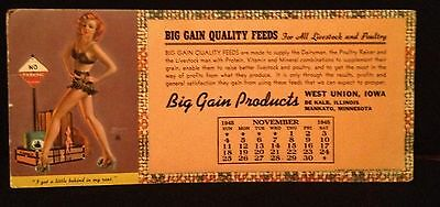 1945 Zoe Mozert PIN-UP GIRL advertising ink blotter Big Gain Feeds West Union IA