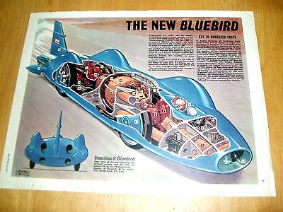 "THE NEW BLUEBIRD  DONALD CAMPBELL STUNNING 1962 COLOUR  EAGLE CUTAWAY 13"" x 10"""