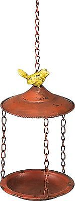 Hanging Bird Feeder w/ Bird