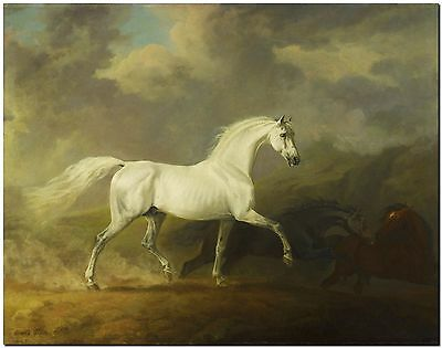 """Frightened Horses by Sawrey Gilpin Canvas Print Poster 12X16"""""""