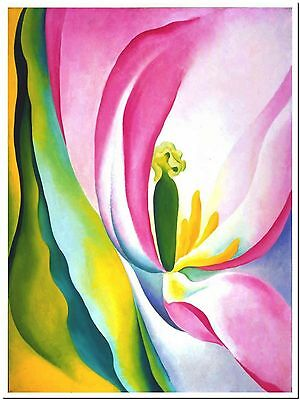 """Pink Flower by Georgia O'Keefe Canvas Print Poster 8X10"""""""