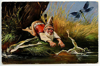 Schonian . Lutin . Grenouille Libellule . Gnome Elfe Frog Dragonfly