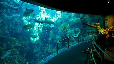 2 Tickets Aquarium Of The Pacific Have Fun And Learn....long Beach Calif