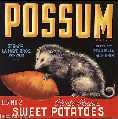 Original Yam Crate Label Possum Louisiana Leonville C1950S Vintage Advertising