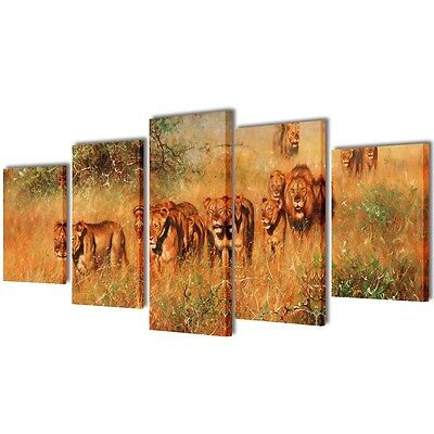 Set of 5 Lion Canvas Prints Framed Wall Art Decor Painting 100x50cm Living Room
