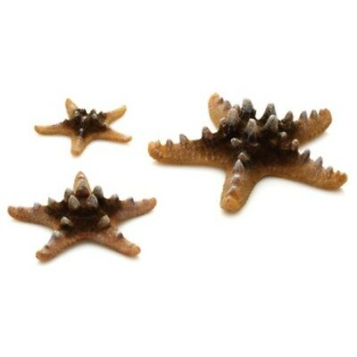 BIORB SEA STARS in NATURAL COLOUR (Pack of 3) 08227280057056