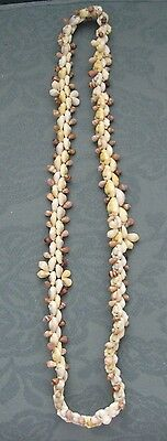 Cowrie shell necklace from the Pacific