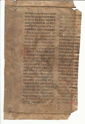 750+ Year Old Huge Vellum Medieval Manuscript Leaf Germany