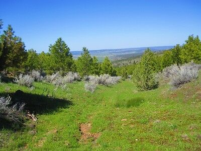California Pines Land Modoc County, Alturas 2 .92 acre lots, together 1.84.