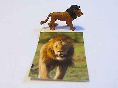 Breyer Pocket Box Animals - LION